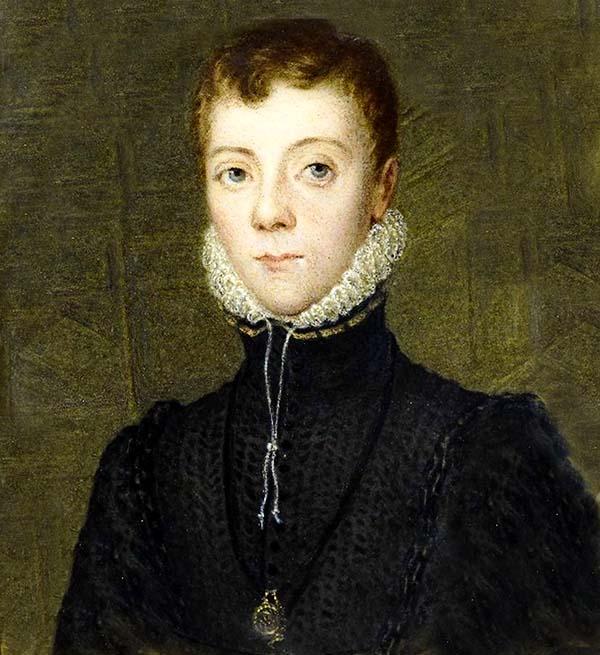 Лорд Дарнли Мария Стюарт. 10 интересных фактов о королеве Шотландии