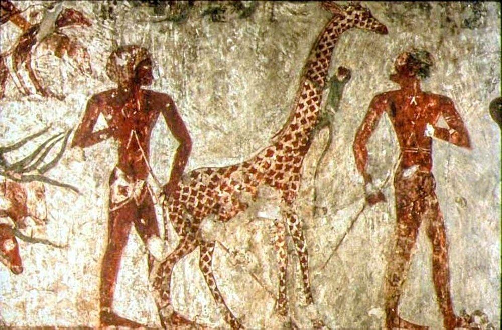 Древние египтяне и жираф, гравюра