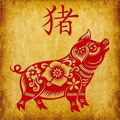 Знак Свиньи китайского зодиака
