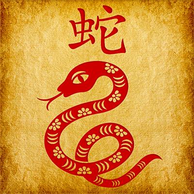 Знак Змеи китайского зодиака